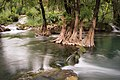 Río Trampolín (3682247811).jpg