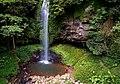 Rainforest flowing water.jpg