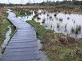 Raised walkway on the flooded Aylestone Meadows - geograph.org.uk - 676593.jpg
