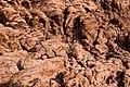 Red Rock Canyon - IMG 4786 (4286812899).jpg