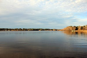 Little River (Withlacoochee River) - Reed Bingham Lake