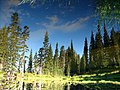Reflection of trees in Faraway Pond (near Faraway Rock) on Lakes trail. Late August, 2014. (563564e814f2468cae791415c7e34786).JPG