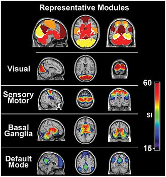 Visual system - Visual cortex is active even during resting state fMRI.