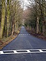 Resurfaced drive to become new entry for cars to Close House - geograph.org.uk - 1183407.jpg