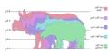Rhinosizes-ar.png