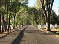 Rhodes Road Area, Reno, Nevada (21332059302).jpg