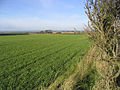 Rich farmland - geograph.org.uk - 281382.jpg