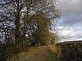 Ridgeway near Lewknor - geograph.org.uk - 108939.jpg