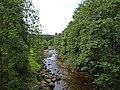 River Derwent - geograph.org.uk - 1446470.jpg