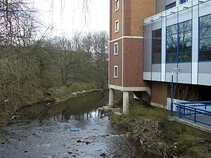 River Don at Hillsborough stadium.jpg