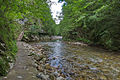 River Mali Rzav and Visocka Banja Spa in Serbia - 4283.NEF 06.jpg