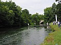 River Test , south of A31 road bridge - geograph.org.uk - 211511.jpg