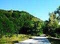Road from Etropole to Yamna,пътят от Етрополе за с.Ямна и с.Черни Вит - panoramio.jpg