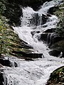 Roaring Fork Falls Black Mountain Campground Pisgah Nat Forest NC 4354 (37947671461).jpg