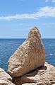 Roca de l'escullera del passeig ecològic de Calp.JPG