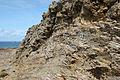 Rock strata near Fox Cove (4) - geograph.org.uk - 1473752.jpg