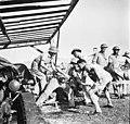 Royal Engineers, Haifa, חיל הנדסה, חיפה-ZKlugerPhotos-00132iv-09071706851270b0.jpg