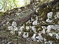 Ruine Lägelen (Wagenburg), Donautal 26.JPG