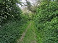 Rumbolds Lane - geograph.org.uk - 1297115.jpg