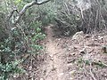 Ruta NAYL 2 - panoramio.jpg