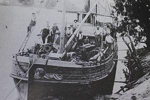 Narara (ship) - Image: SS Narrara circa 1905