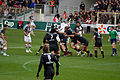 ST vs Harlequins - Match-1.jpg