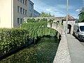 Saalbach, Bruchsal, Rest Staftmauer.jpg
