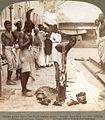 Sacrifice to the Hindu goddess Kali in Calcutta in 1903 (half postcard).jpg