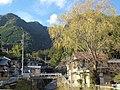 Sakumacho Kawai, Tenryu Ward, Hamamatsu, Shizuoka Prefecture 431-3907, Japan - panoramio.jpg