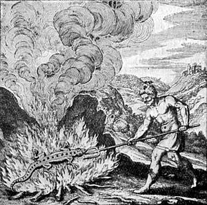 Salamanders in folklore and legend - A 16th-century image of a salamander from The Book of Lambspring