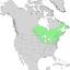 Salix lucida range map 1.png