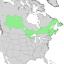 Salix pyrifolia range map 2.png