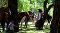 San Antonio de Areco-Fiesta de la Tradición 20.jpg