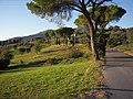 San Gennaro - panoramio.jpg
