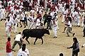 Sanfermines Vaquillas Pamplona 01.jpg