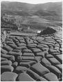 Sardinia, Italy. Monteponi mine - NARA - 541727.tif