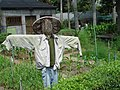 Scarecrow in Taipei Botanical Garden 20070429.jpg