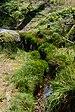 Schönwald im Schwarzwald Schwarzenbach 01.jpg