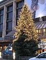 Schadowstraße 93 (Düsseldorf), Weihnachtsbaum vor Karstadt 2010.jpg