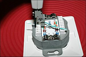 Punch down tool - A punch down tool in use, terminating a twisted pair cable into a Cat5e receptacle