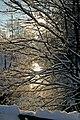 Schwippe im Winter - panoramio.jpg
