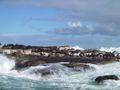 Seal island hout bay.jpg