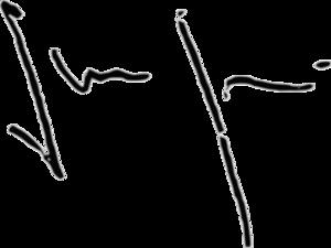 Shahid Khaqan Abbasi - Image: Shahid Khaqan Abbasi signature
