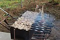 Shashlik on a mangal 0360.jpg