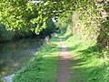 Sheltered towpath - geograph.org.uk - 637361.jpg