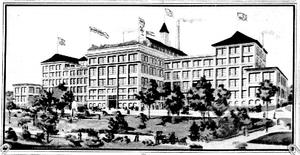 Shredded wheat - Shredded Wheat factory in Niagara Falls, New York circa 1905.