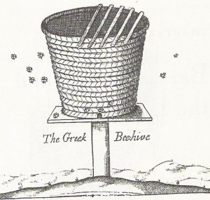 Horizontal top-bar hive - Short top-bar hive from Greece, as depicted in 1682.