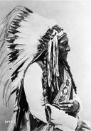 Sitting Bull (Tatonka-I-Yatanka), a Hunkpapa Sioux, 1885 - NARA - 530896 edit