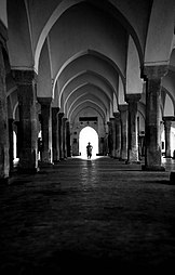 Sixty Dome Mosque 105.jpg