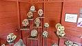 Skulls (30833401500).jpg